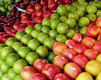 Apple Quality Fresh Apples all types -