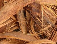 dried coconut fertilizer -