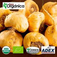 Organic/conventional Maca -