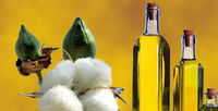 Cottonseed Oil -