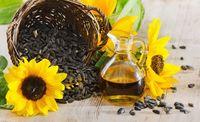 óleo de Girassol  -