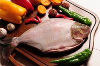 TAMBAQUI FISH FROZEN WHOLE WITHOUT VISCERA AND WITHOUT SCALES -
