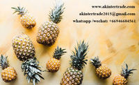 Frozen Pineapple Fruit Dice/Slice/Chunks Thailand -