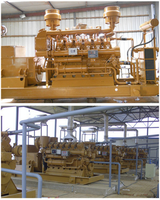 China electric generators factory supply biogas engine generator for sale  -
