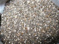 ORGANIC CHIA SEEDS AVAILABLE FOR SALE -