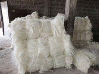 剑麻纤维, UG 级白剑麻纤维, 用于建筑高 -