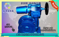 SKD Series multi-rotary electric actuator -