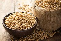 TEMOS SOJA GMO – GMO SOYABEAN - ORIGIN BRAZIL -