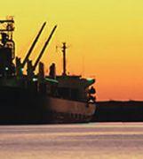 Sea Cargo Services -