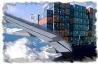 Trade, Transport And Freight Forwarding Services -