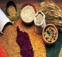 #a maíz -