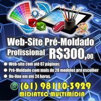 creación de sitios web profesional -