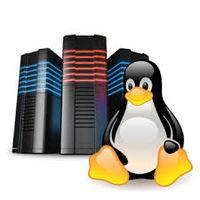 Linux Hosting -